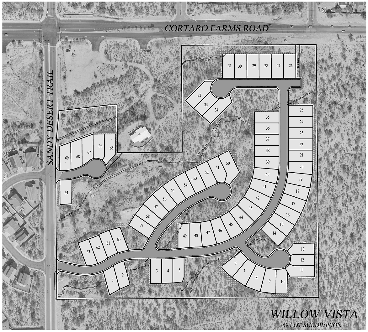 Willow Vista Preliminary Plat Layout